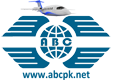 Aviation Business Consultant
